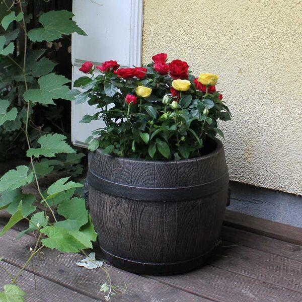 ROTO BOLERO cvjetna tegla