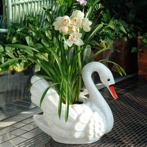 ROTO labud dekorativno cvjetno korito